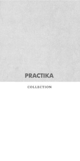 portada-AREA-TECNICA-PRACTIKA
